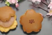 【青野総本舗】春にぴったり!桜をモチーフにした和菓子の贈り物